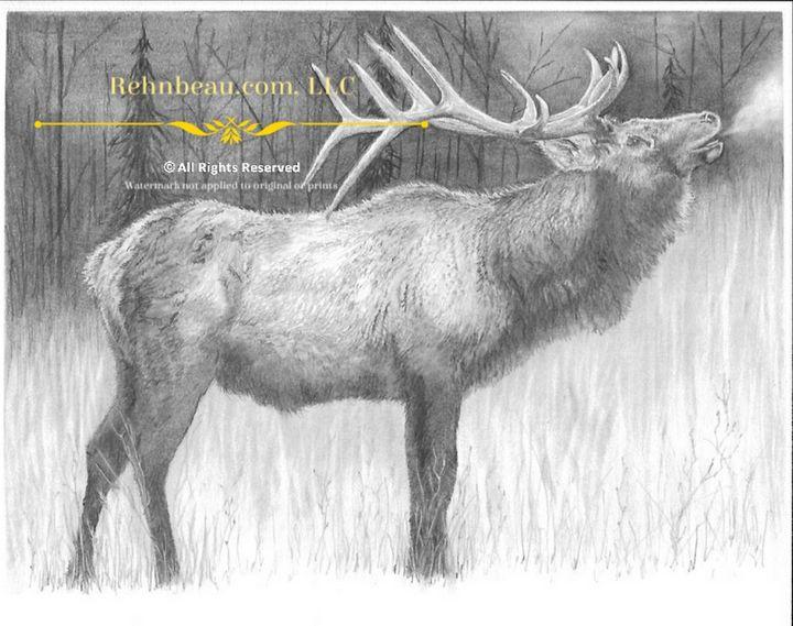 First Elk - Rehnbeau