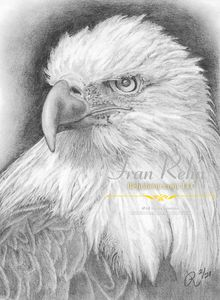 First Eagle - Rehnbeau