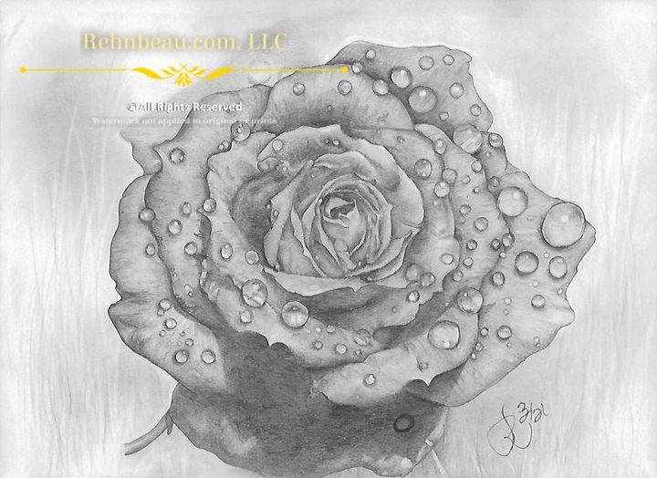 First Rose - Rehnbeau
