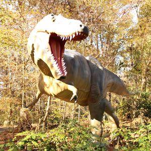 Tyranasaurus Terri - Klacey's Photography