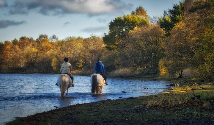 Gartmorn Dam Country Park - Jeremy Lavender Photography