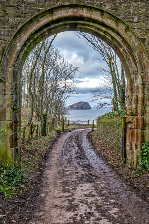 Leaving the Beach at Bass Rock - Jeremy Lavender Photography
