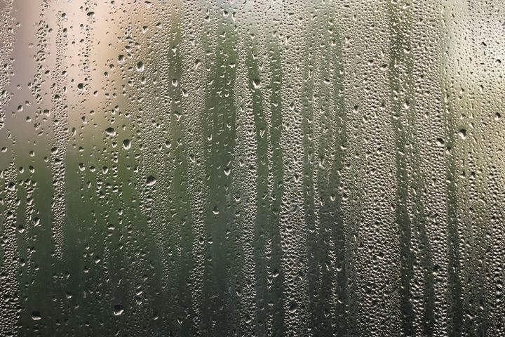 The Rain - Jeremy Lavender Photography