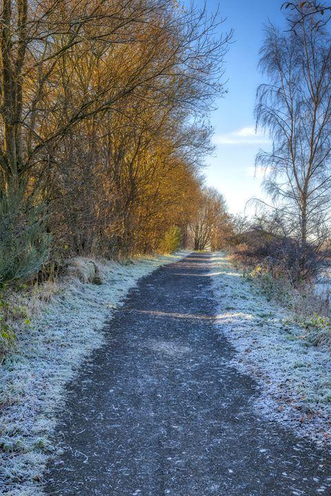 Winter Path in Scotland - Jeremy Lavender Photography