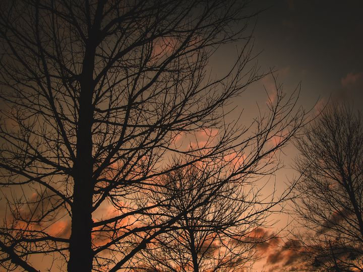 Silhouette - ndko - photography by Nicky DK Ovesen