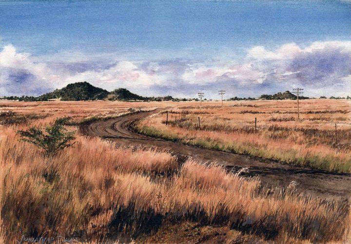 The Road to Springfontein - Jonathan Davis