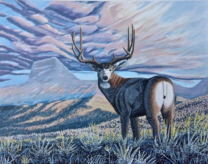 Deer in the Rocky Mountains - Brian Sloan Paintings - Il Pennello d'Oro Art
