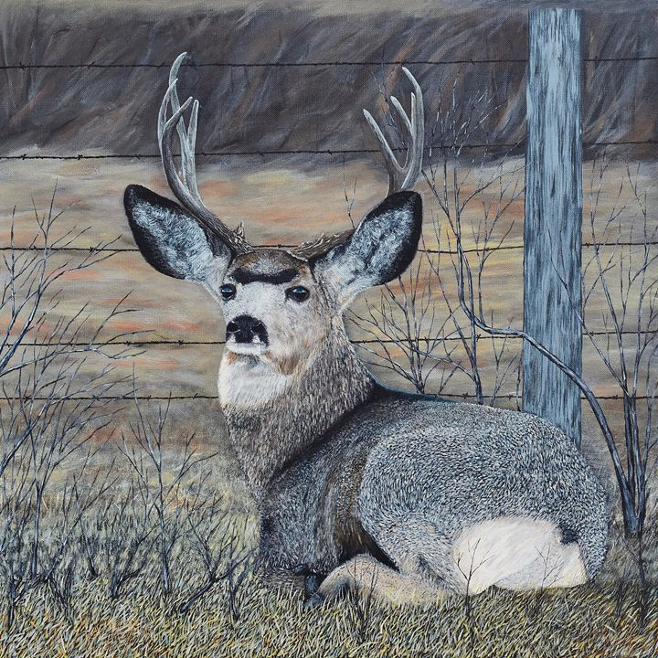 Mule Deer in the Brush - Brian Sloan Paintings - Il Pennello d'Oro Art