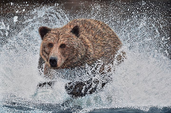 Grizzly Bear Running Through Water - Brian Sloan Paintings - Il Pennello d'Oro Art