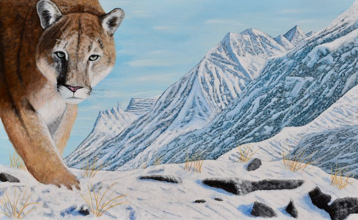 Mountain Lion in the Rockies - Brian Sloan Paintings - Il Pennello d'Oro Art
