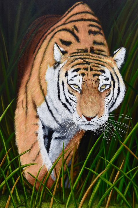 Tiger in the Grass - Brian Sloan Paintings - Il Pennello d'Oro Art