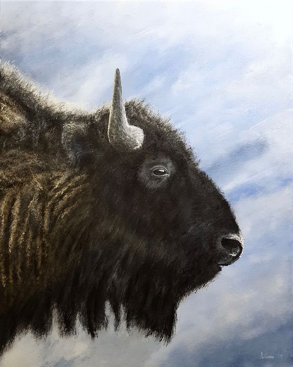 Buffalo - Brian Sloan Paintings - Il Pennello d'Oro Art
