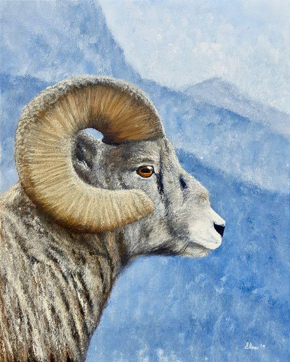 Bighorn Sheep - Brian Sloan Artist