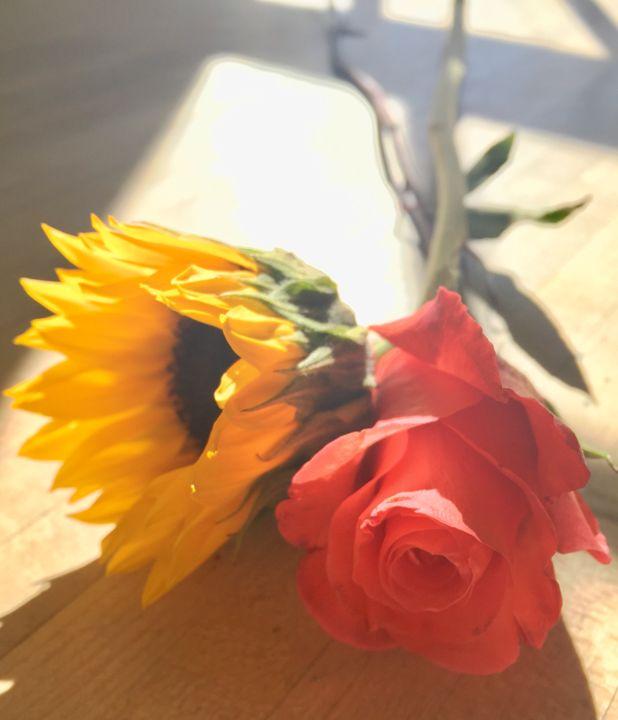 Sunflower and Rose - Brogan Fine Art