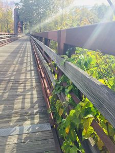 Walk on a Bridge - Brogan Fine Art