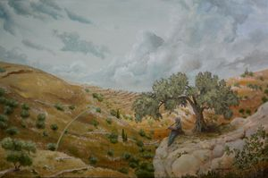 Olive Hills