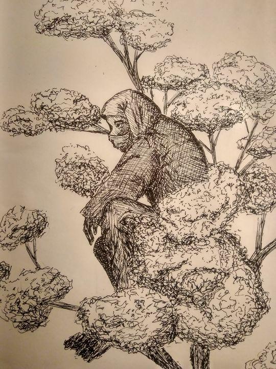 Ink ninja - Morenis