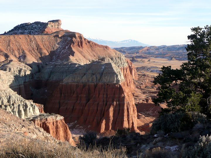 Inspiration Point with Juniper - Brian Shaw