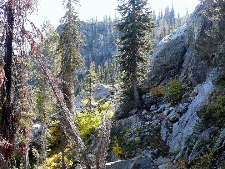 Highline Trail View - Brian Shaw