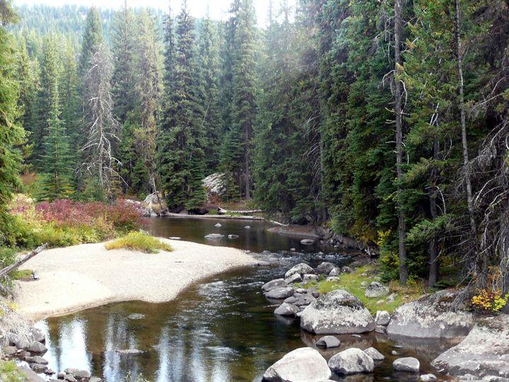 Stream near Yellowpine - Brian Shaw