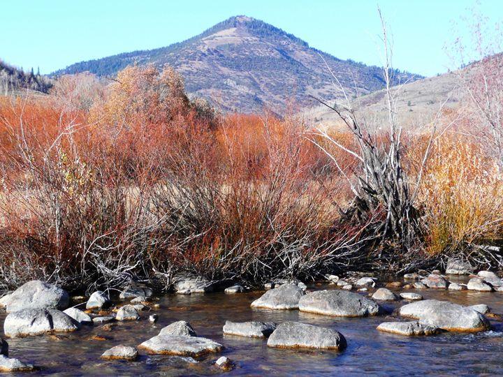 Logan Creek Sticks - Brian Shaw