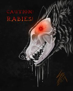 "Poster ""Caution! Rabies!"" with text"