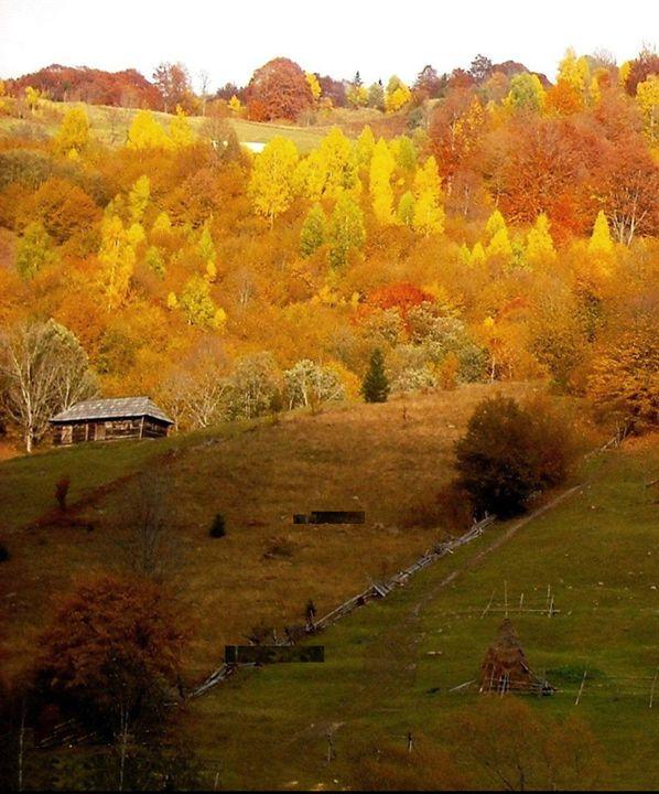 Las Pass In Autumn - KnKSTUDIO