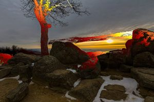 Sunset On Rocks And A Tree