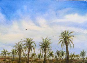 Nakheel Field