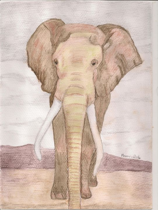 watercolur pencil elephant - Merrin's Art