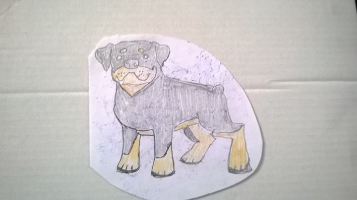 cartoon dog - adam