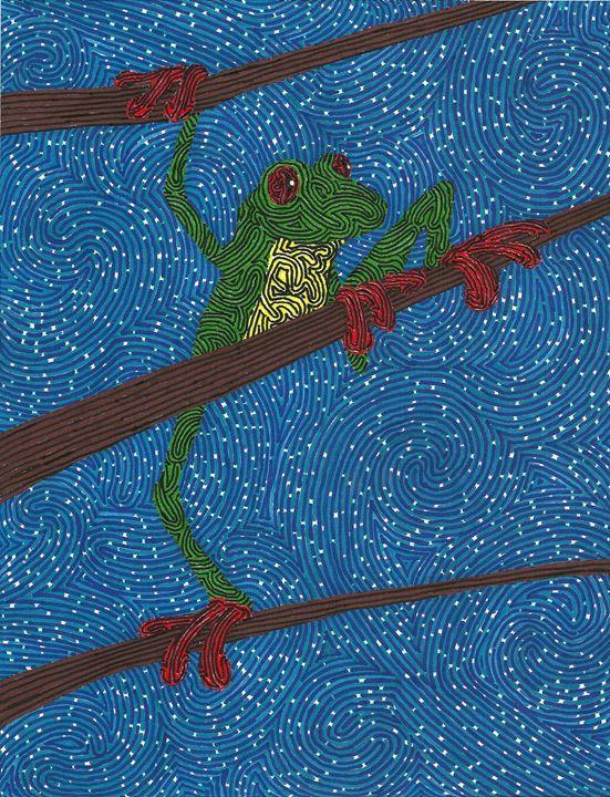Treefrog at night - Kevin Van Parys