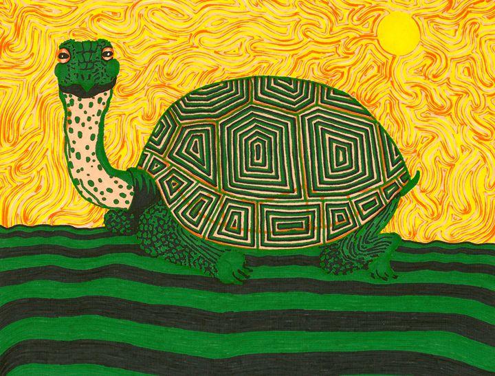 Tortoise - Kevin Van Parys