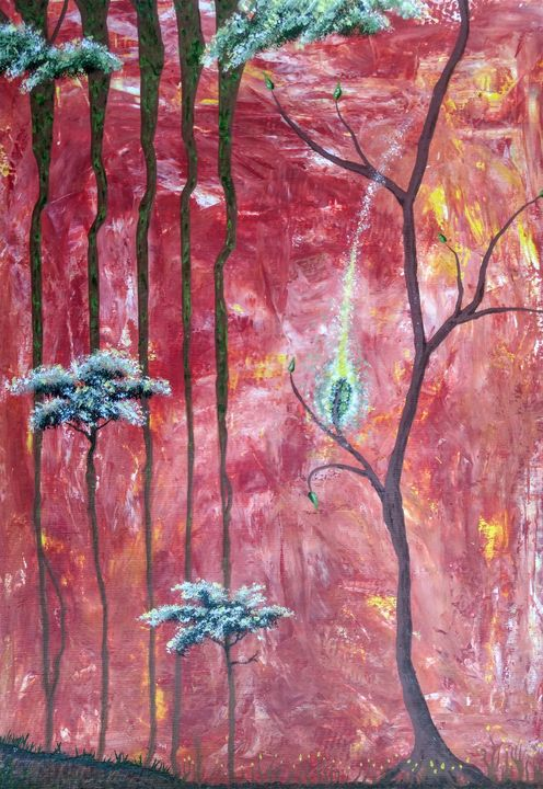 Magical Forest - Tim Lippert