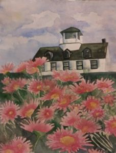 Pink Daisies at Lighthouse