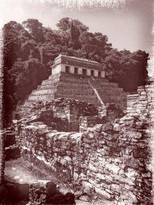 MS Parque Nacional Palenque 10 ONFX.