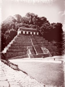 MS Parque Nacional Palenque 12 ONFX.