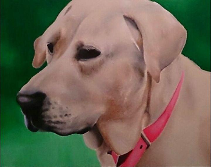 Pippa - Acrylic Paintings