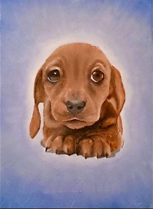 Dachshund Puppy - Acrylic Paintings