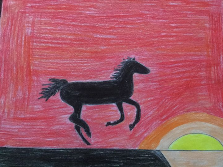 Black horse running in the sunset - Tyler Bassett