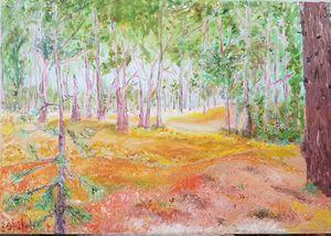 Forest - Dan Shiloh