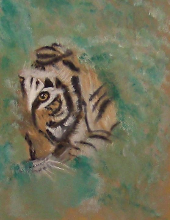 Eye of the Tiger - Michela's Gallery