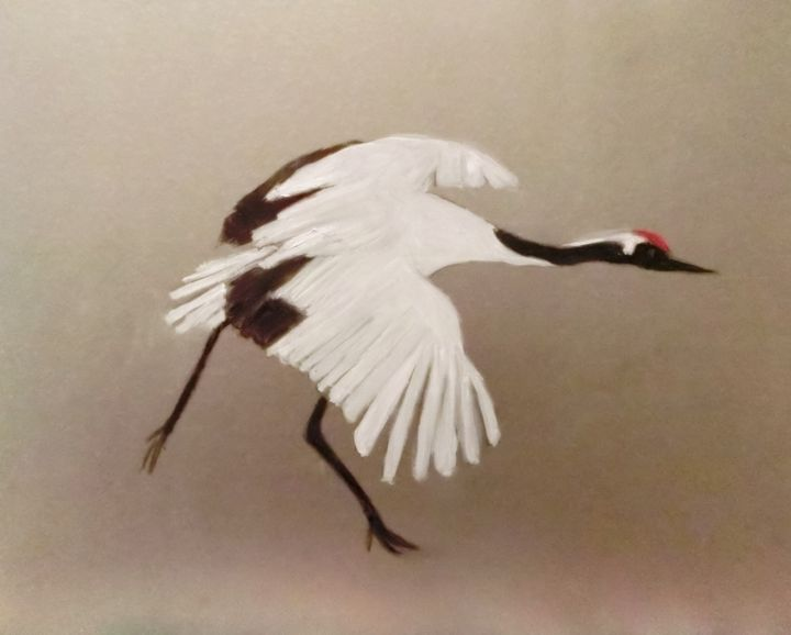 The Red-Crowned Crane - Michela's Gallery