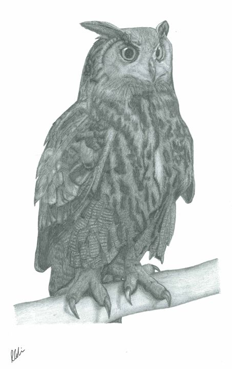 Eagle Owl - Richard Colvin