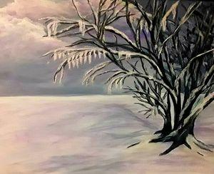 Winter skies - Tama Ballard