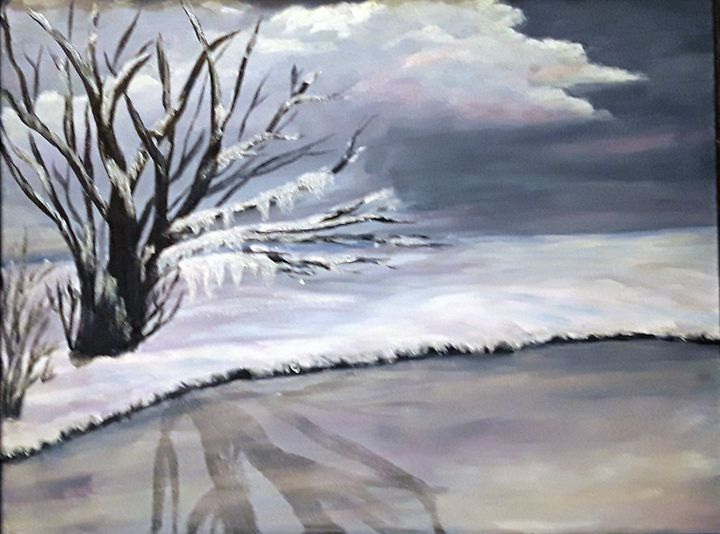 Winter pond - Tama Ballard