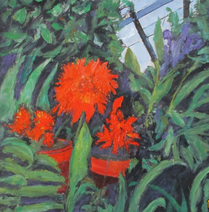 Orange flowers - Riverview Gallery