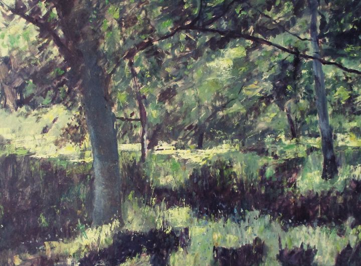 Birch trees in summer - Riverview Gallery
