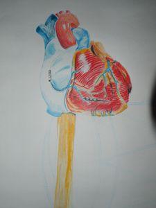 You've Got My Heart on Stick