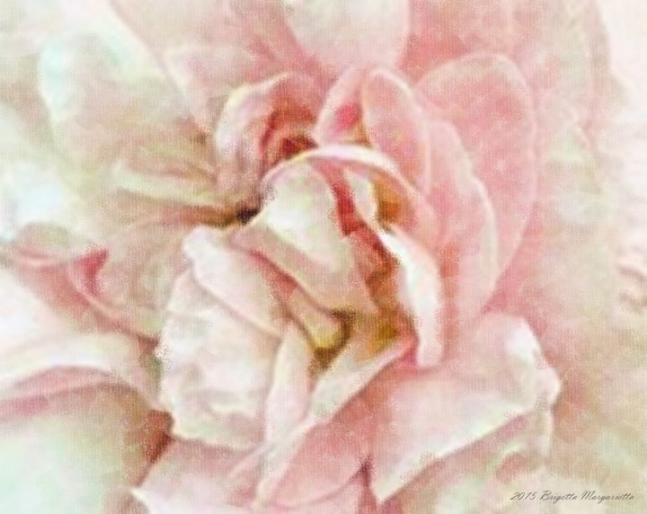 Shabby Cottage Rose - Abstract Art Environment